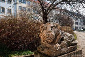 Ein Geraer Löwe in der Innenstadt